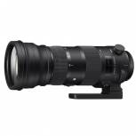 Sigma 150-600mm f.5-6.3 DG OS HSM Sports Lens image here